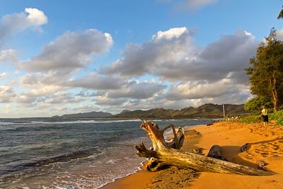 Early morning sunshine on Kauai's eastern shore