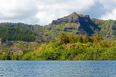 Scenery along the Wailua River