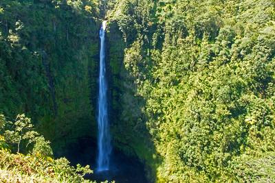 The water at Akaka Falls drops 440 feet