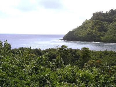 Views along the Hana Coast.
