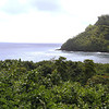 Views along the Hana Coast.