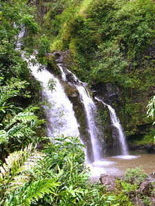 The Road to Hana: Views such as these were very beautiful to see up close.
