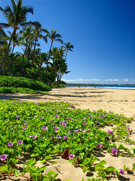 Ka'anapali Beach in West Maui.
