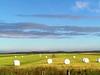 Campos de cereales