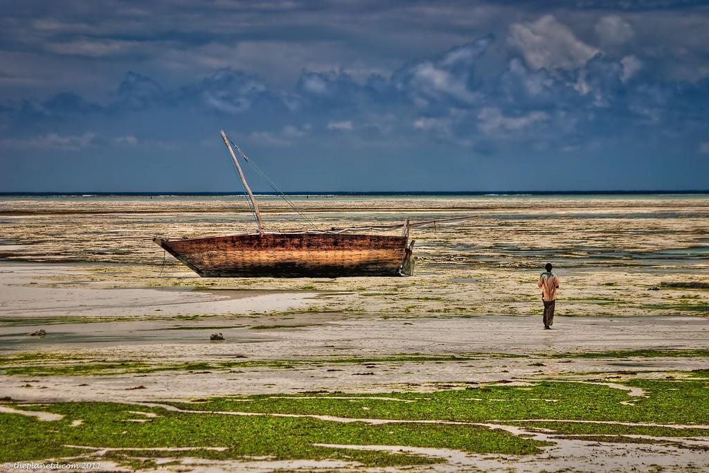 tropical-island-pictures-zanzibar