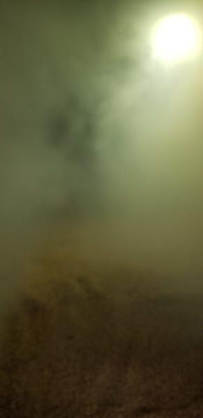 Peat smoke wafts up through the barley at Laphroaig