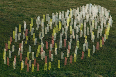 Coloured banners wave on the hill above the Needles on the Isle of wight