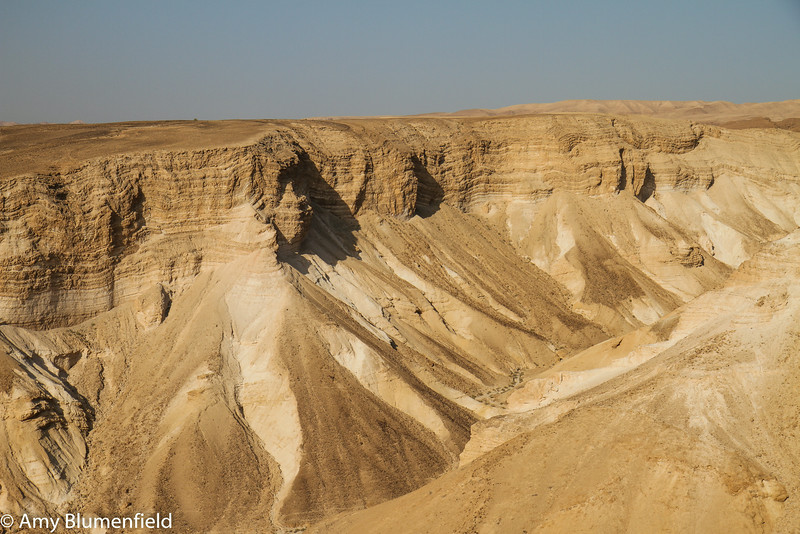 From Masada, looking out