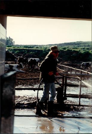 I1989-90 Israel