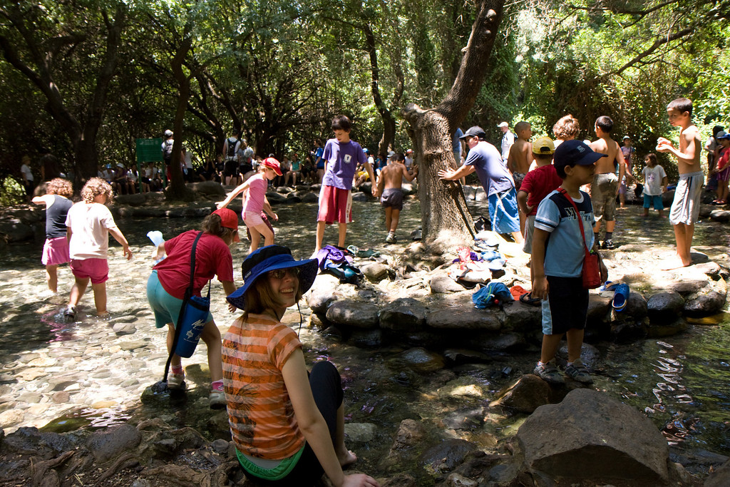 The springs of Tel Dan- cool and refreshing