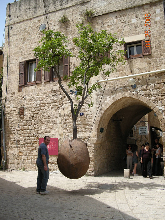 Hanging Tree at Old Jaffa