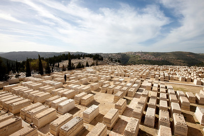 Israel_2010_0041