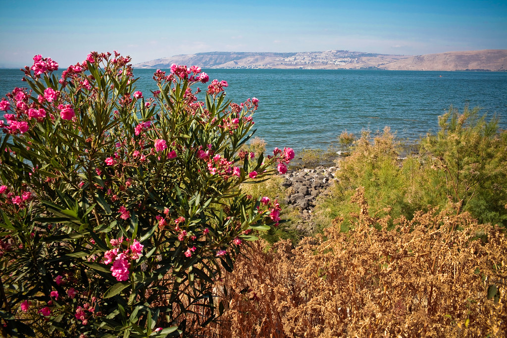 The sea of Galilee is pretty from every angle.