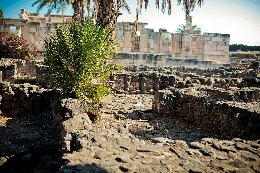 Capernaum and the synogogue