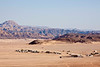 """A """"town"""" built by the Egyptian government to permanently house Bedouins. There are several of these scattered about the desert, but many Bedouins prefer the nomadic life and refuse to settle into these permanent quarters."""