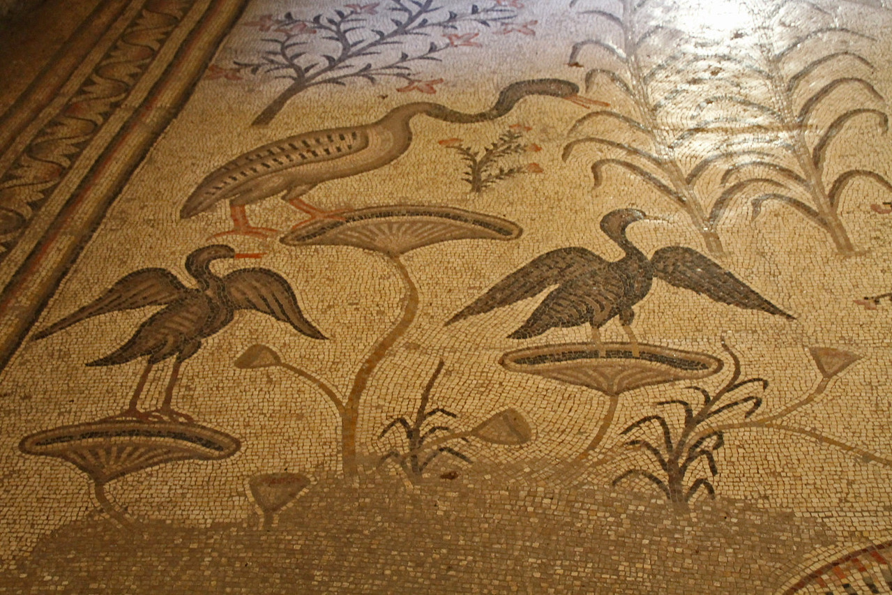 Benedictine Monastery - Floor Tiles