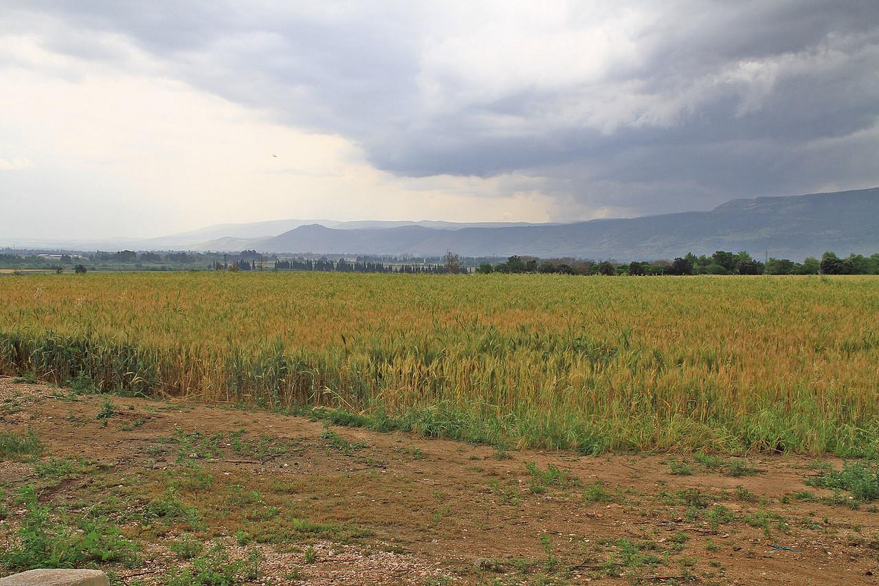 Northern Israel - Baruch