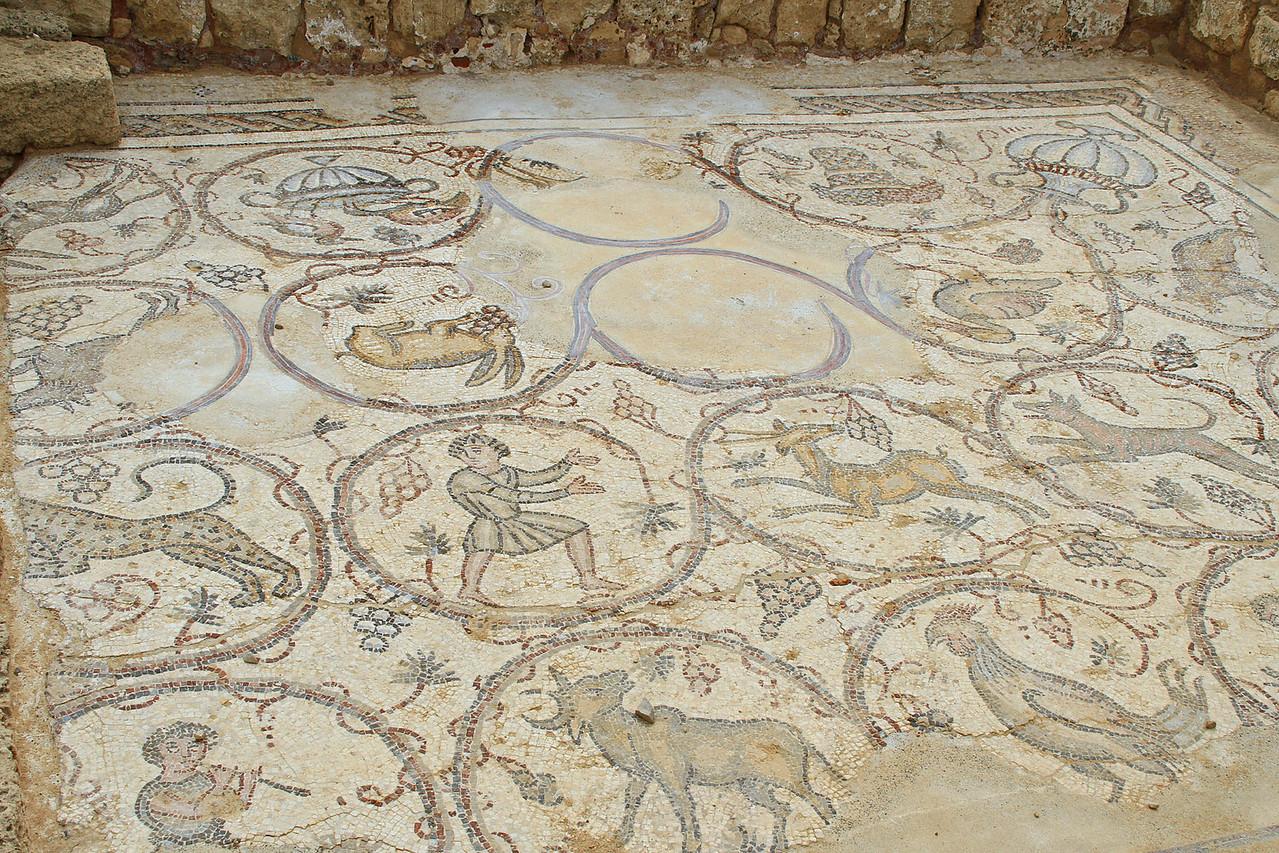 Caesarea - Mosaic Tile