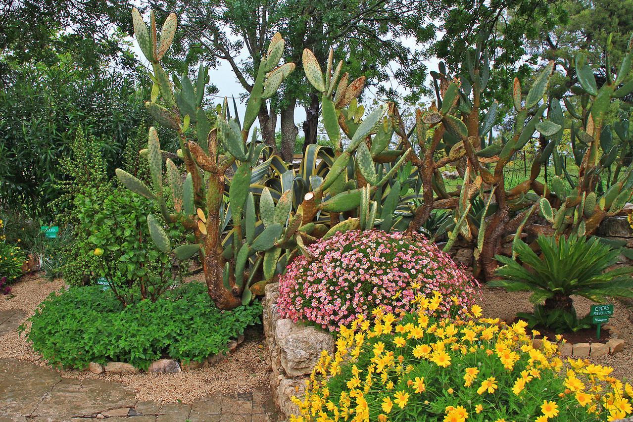 Mt. Tabor Gardens
