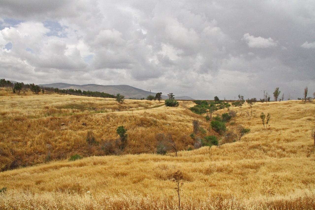 Jordan River Valley South of Sea of Galilee