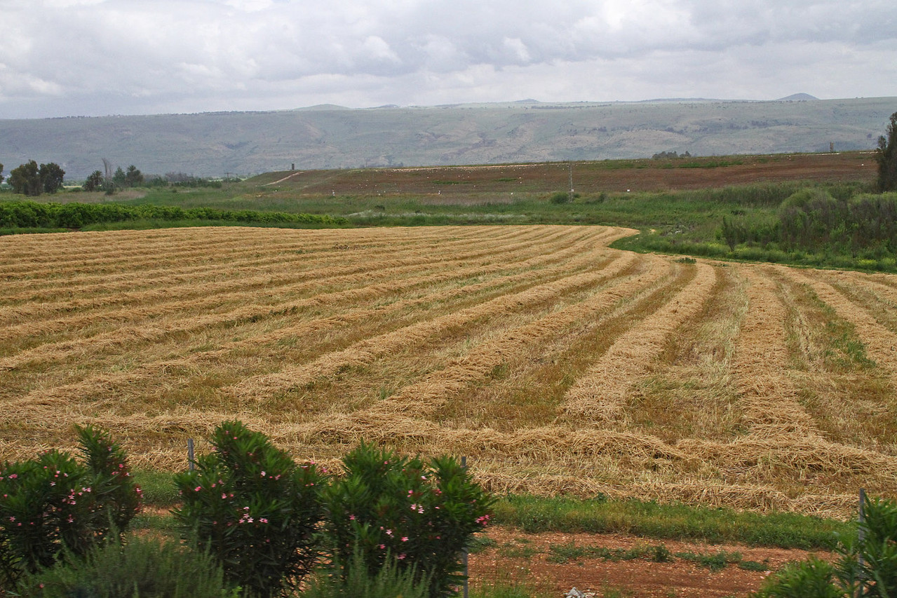 Jordan River Valley & Hula Valley