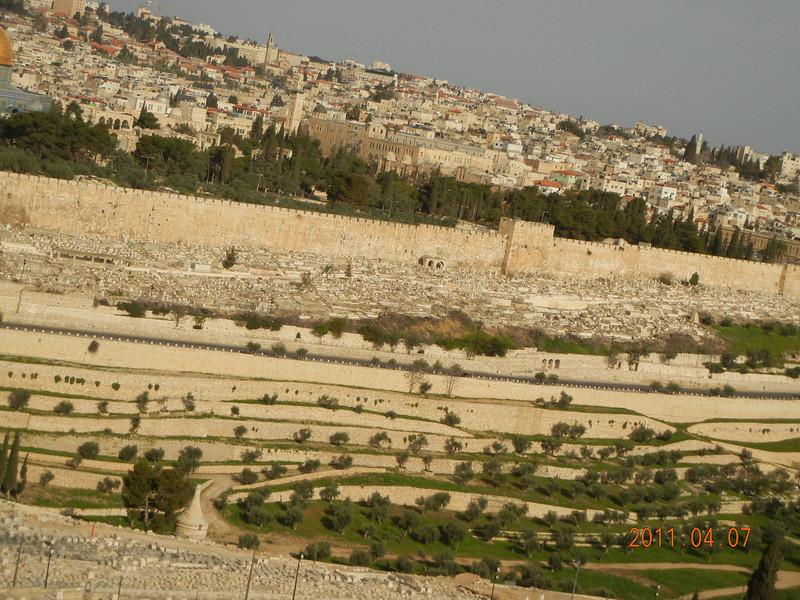 Golden Gate, Jerusalem, Israel<br /> <br /> Matthew<br /> <br /> 第二十一章 默西亞榮進耶路撒冷<br /> <br /> 1.當他們臨近耶路撒冷,來到靠近橄欖山的貝特法革時,耶穌就打發兩個門徒,2.對他們說:「你們往對面的村莊裏去,立時會看見一匹栓的母驢,和跟牠在一起的驢駒。解開,給我牽來,3.如果有人對你們說什麼,你們就說:主要用牠們。他們就會立刻放牠們來」4.這事發生,是為應驗先知所說的:5.「你們應向熙雍女子說:看,你的君王來到你這裏,溫和地騎在一匹驢上,一匹母驢的小驢駒上。」6.門徒就去,照耶穌吩咐他們的做了。7.他們牽了母驢和驢來,把外衣搭在牠們的身上,扶耶穌坐在上面。8.很多群眾,自己的外衣舖在地上,還有些人從樹上砍下樹枝來,撒在路上。9.前行後隨的群眾喊說:「賀三納於達味之子!因上主之名而來的,當受讚頌!賀三納於至上之天。」10.當耶穌進入耶路撒冷的時候,全城哄動,說:「這人是誰?」11.群眾說:「這是加利肋亞納匝肋的先知耶穌。」