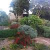 Kibbutz landscaping!