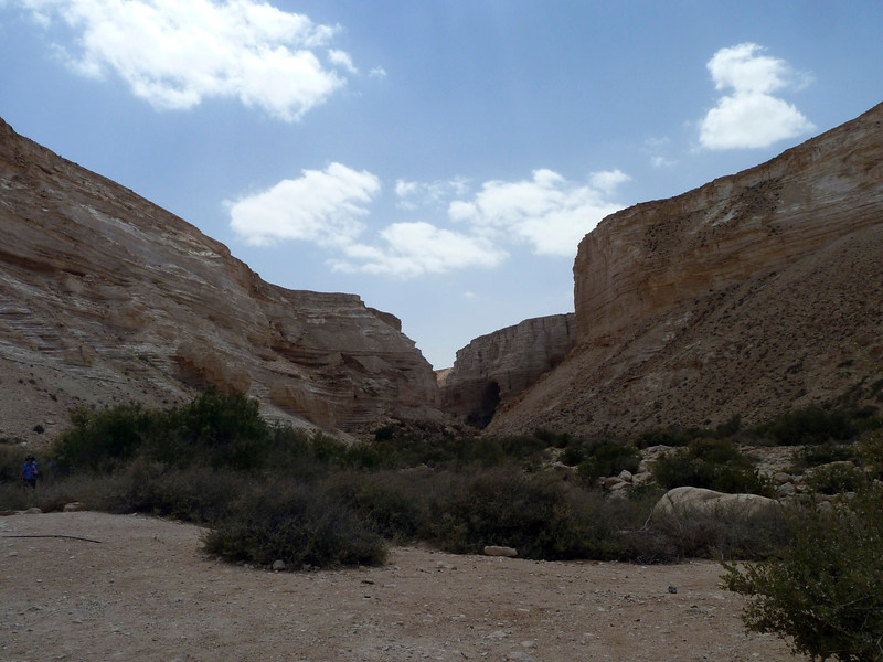 En Avdat. Hike to an oasis in the canyon.