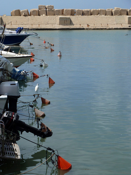 More of the port at Yafo/Jaffa