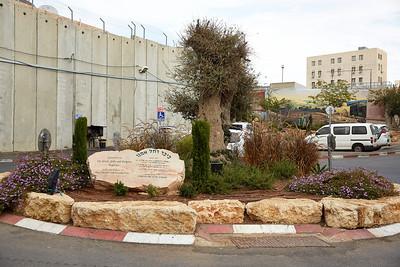 Israel 2013_0020