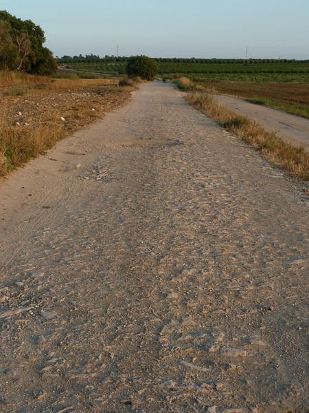 The ancient Roman road to Caesaria