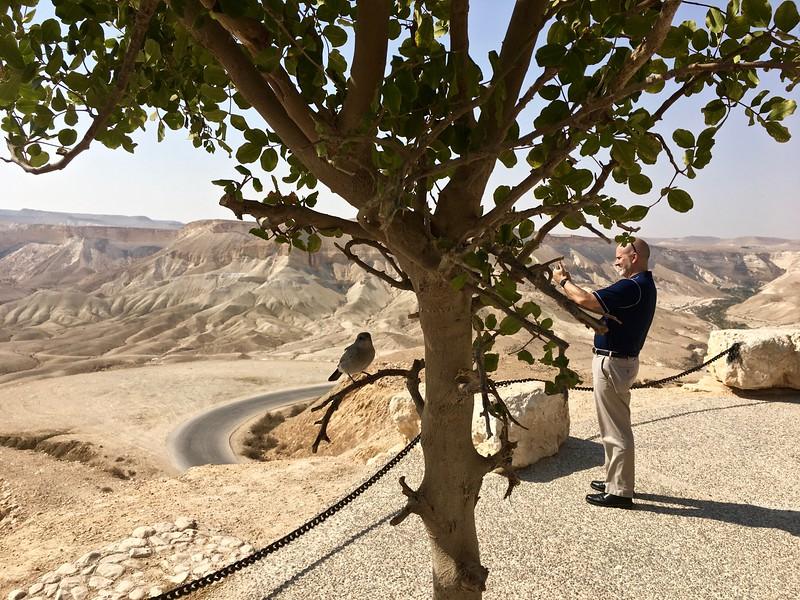 Ben Gurion's tomb site