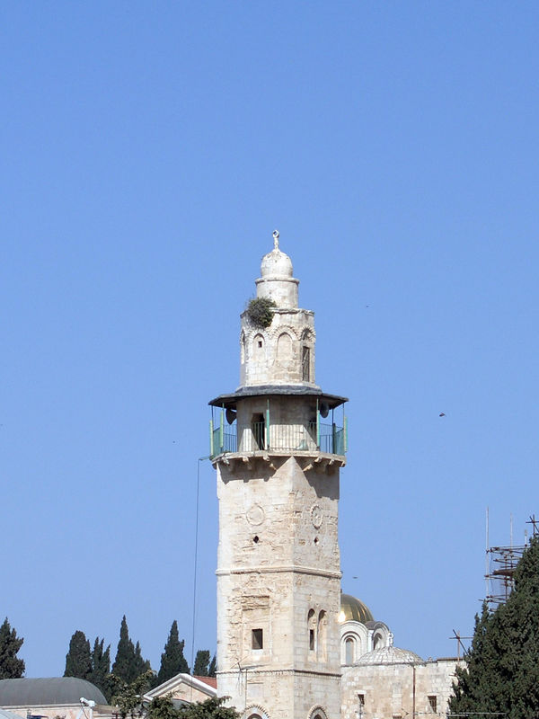 I was taking a shot of this minaret when...