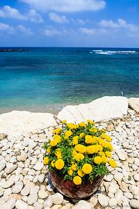 Israel Trip 2014 - PREVIEW