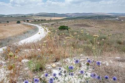 Israel and Jordan 2013