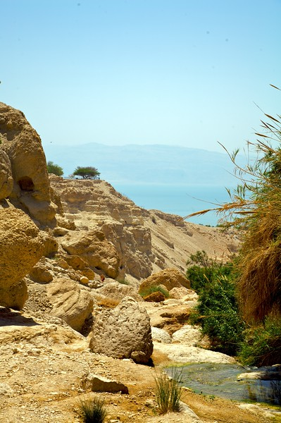 Dead Sea off in the distance...