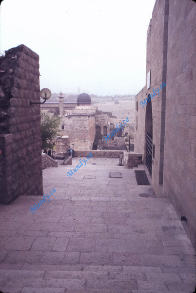 A path we walked often.  Around the corner to the left is the Western Wall and Temple Mount.  Straight ahead - the Mount of Olives on the horizon.