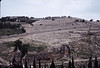 Here is a closer view of the Mount of Olives.