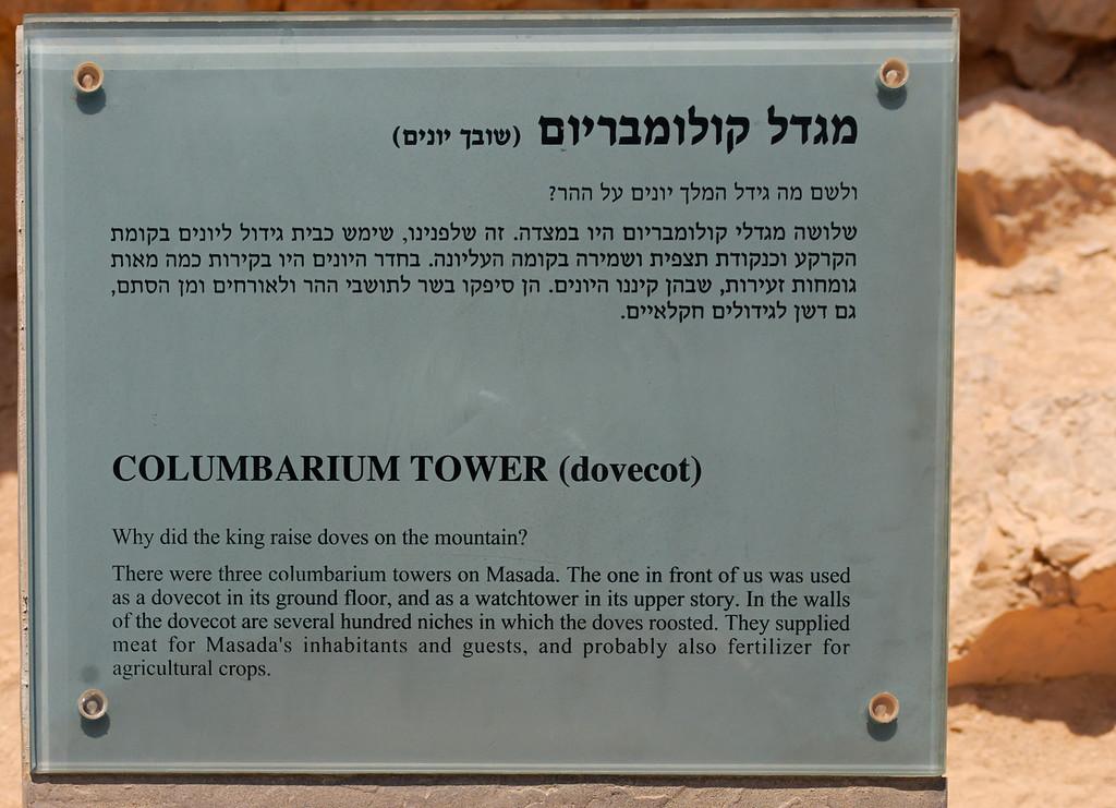 Massada - Israel -  20090610 - 2691