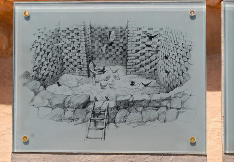 Massada - Israel -  20090610 - 2690