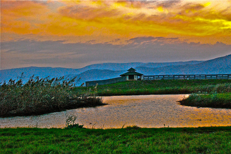 Hula Lake Park, Northern, Israel (c) Daniel Yoffee