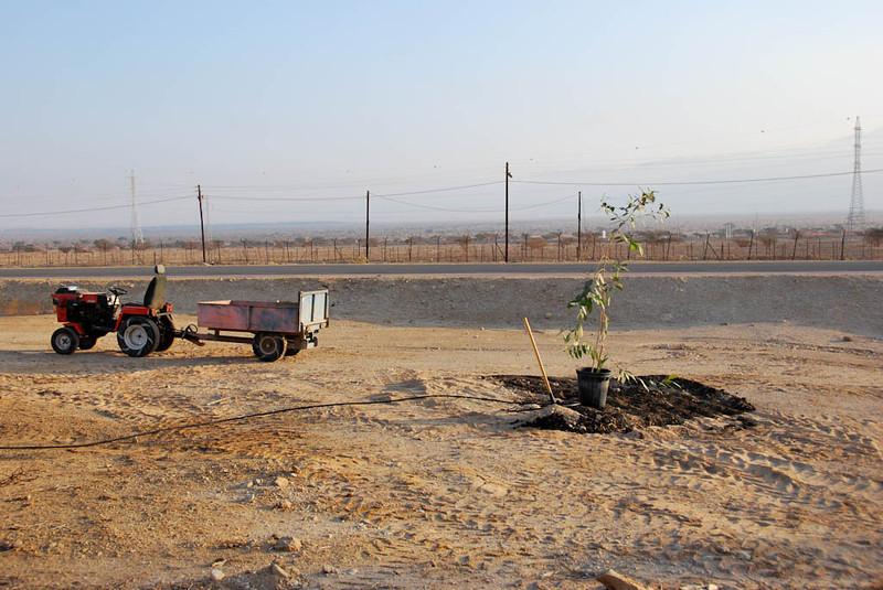 Tree Planting in Memory of Alan - Kibbutz Samar (c) Daniel Yoffee
