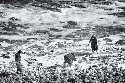 Scandalous  Nuns harvest salt along the Dead Sea, Israel.