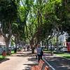Rostchild Blvd - Tel Aviv