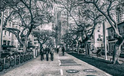 Rothschild Blvd.