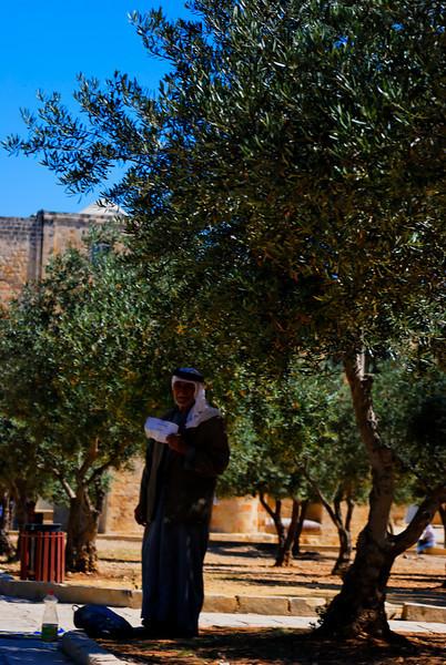 Jerusalem - Israel _3036