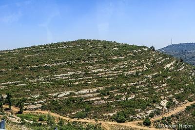 jn_Israel2014-0030