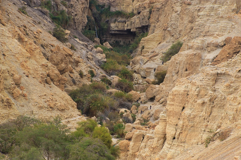 Near Dead Sea