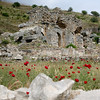 Poppies, Ruins at Ephesus
