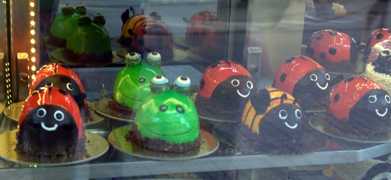 Bug cakes in a bakery. Through two panes of glass.
